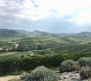 Urlaub im Piemont