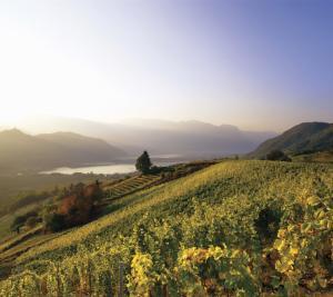 Reisetipps für den Herbst in Südtirol