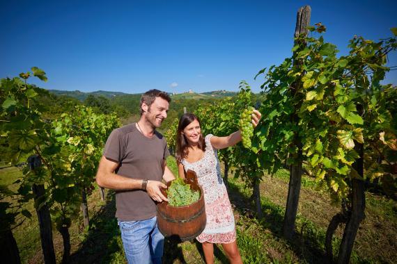 Wein aus Slowenien