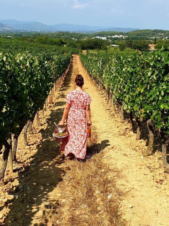 Reise in die Provence