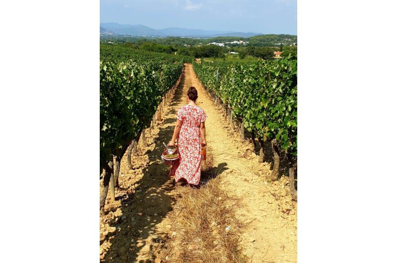 Ferien in der Provence