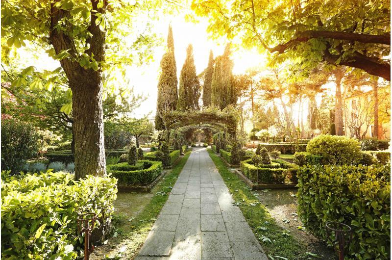 Romantischer Garten im Urlaub genießen in der Provence