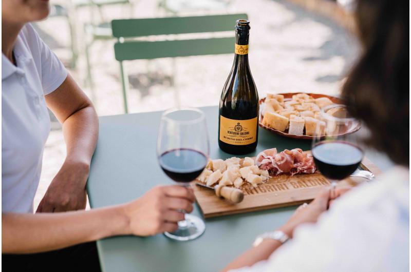 URLAUB BEIM WINZER AUF DEM BIO-WEINGUT: Gourmet-Menüs, Wein- und Balsamico-Verkostung in der Emilia Romagna