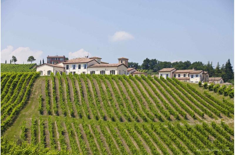 Weinverkostung mit Übernachtung im Weingut Borgo Condé
