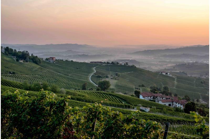 Trüffelreise Piemont
