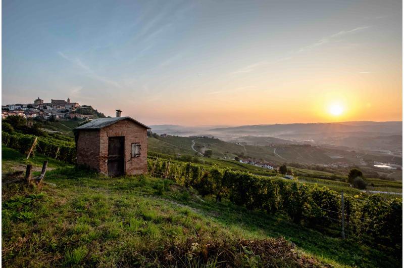 Weinreise Barolo